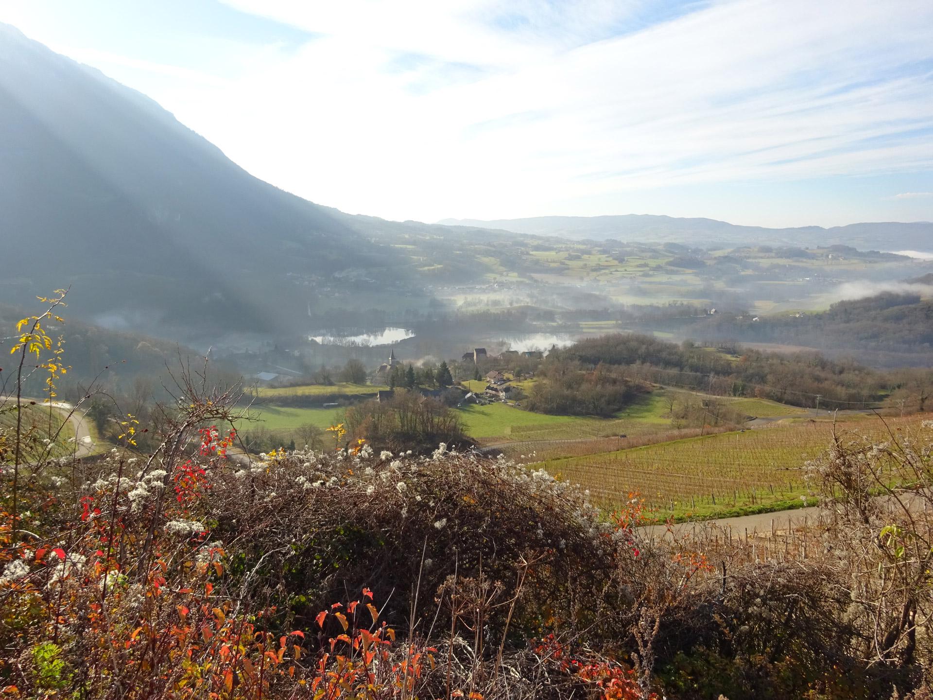 A la découverte des écosystèmes de Saint Jean de Chevelu : zones humides et pelouses sèches